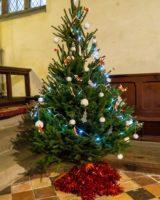 Christmas Tree Festival 2017 (21 of 47) (Large)