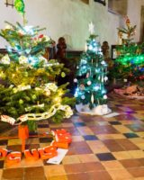 Christmas Tree Festival 2017 (41 of 47) (Large)