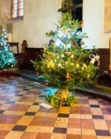 Christmas Tree Festival 2017 (42 of 47) (Large)