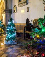 Christmas Tree Festival 2017 (44 of 47) (Large)