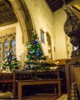 Christmas Tree Festival 2017 (45 of 47) (Large)