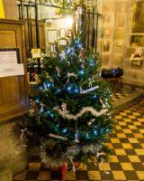 Christmas Tree Festival 2017 (7 of 47) (Large)