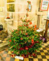 Christmas Tree Festival 2017 (9 of 47) (Large)